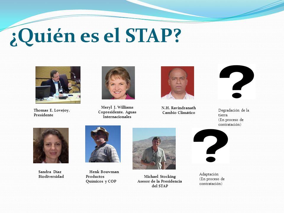 ¿Quién es el STAP. Thomas E. Lovejoy, Presidente Meryl J.