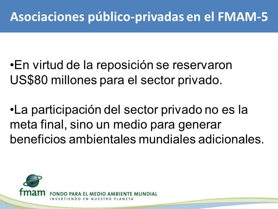 Asociaciones público-privadas en el FMAM-5 En virtud de la reposición se reservaron US$80 millones para el sector privado.