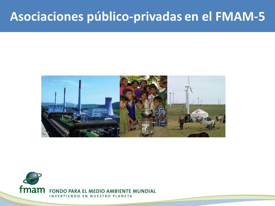 Asociaciones público-privadas en el FMAM-5