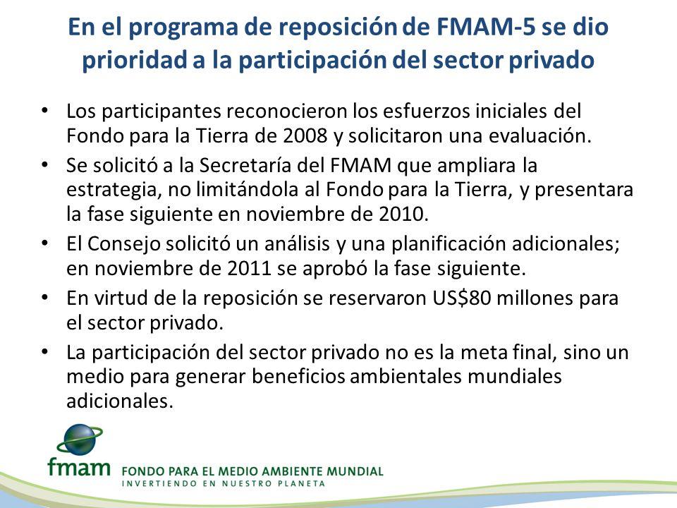 En el programa de reposición de FMAM-5 se dio prioridad a la participación del sector privado Los participantes reconocieron los esfuerzos iniciales del Fondo para la Tierra de 2008 y solicitaron una evaluación.