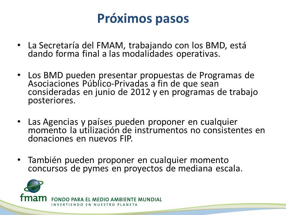 Próximos pasos La Secretaría del FMAM, trabajando con los BMD, está dando forma final a las modalidades operativas.