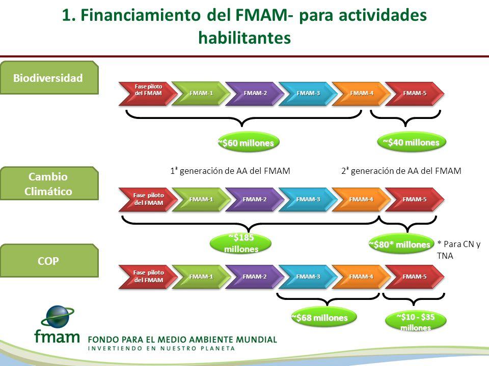 1. Financiamiento del FMAM- para actividades habilitantes Fase piloto del FMAM FMAM-1 FMAM-2FMAM-3FMAM-4FMAM-5 1 ª generación de AA del FMAM2 ª genera