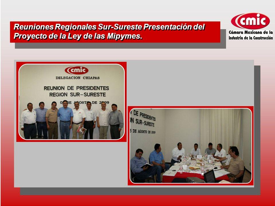 Reuniones Regionales Sur-Sureste Presentación del Proyecto de la Ley de las Mipymes.