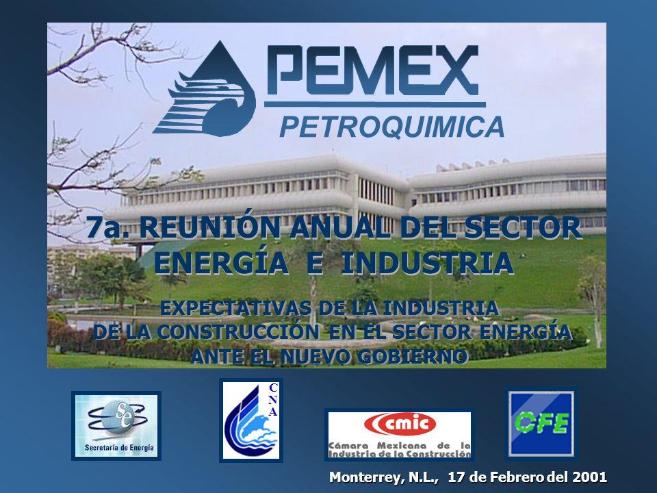 PETROQUIMICA 7a. REUNIÓN ANUAL DEL SECTOR ENERGÍA E INDUSTRIA Monterrey, N.L., 17 de Febrero del 2001 EXPECTATIVAS DE LA INDUSTRIA DE LA CONSTRUCCIÓN