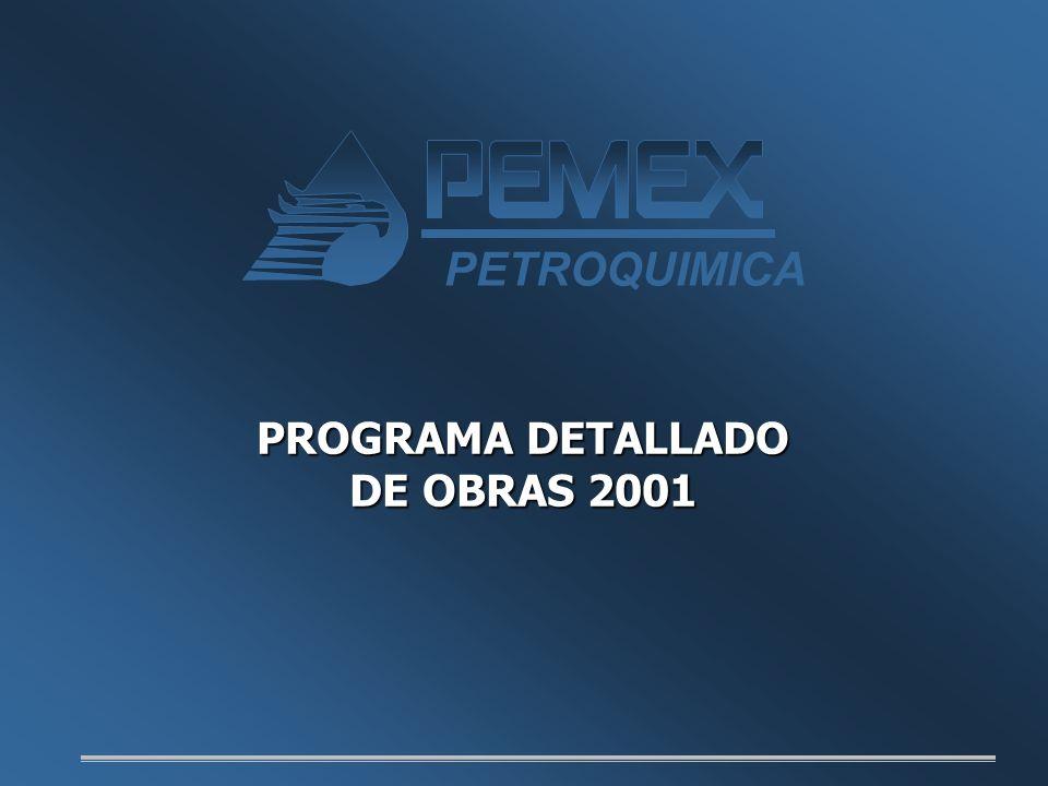 PROGRAMA DETALLADO DE OBRAS 2001 PETROQUIMICA