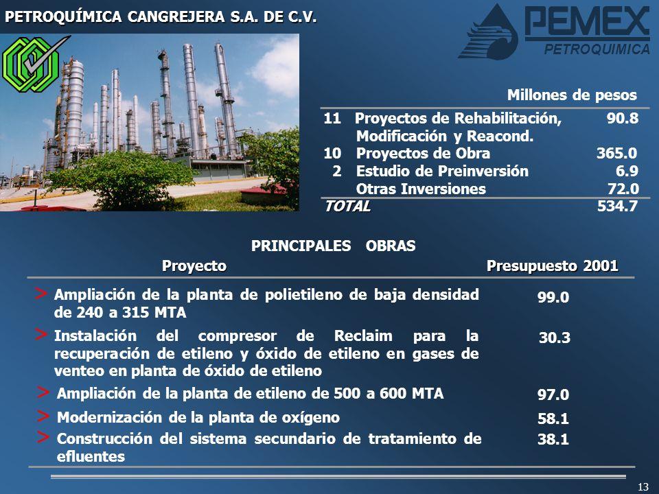 PETROQUIMICA 13 PETROQUÍMICA CANGREJERA S.A. DE C.V. 11 Proyectos de Rehabilitación, 90.8 Modificación y Reacond. 10 Proyectos de Obra 365.0 2Estudio