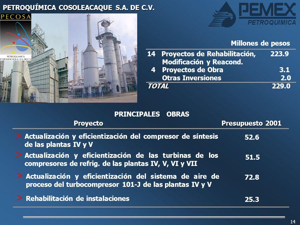 PETROQUIMICA 14 14 Proyectos de Rehabilitación, 223.9 Modificación y Reacond. 4 Proyectos de Obra 3.1 Otras Inversiones 2.0 TOTAL TOTAL 229.0 Millones