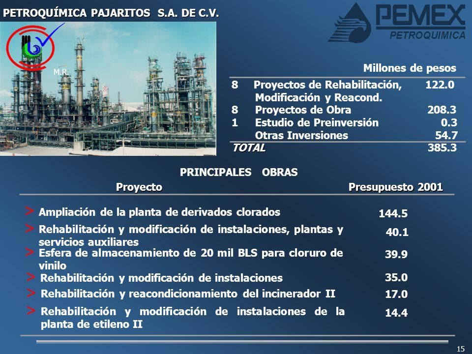 PETROQUIMICA 15 8 Proyectos de Rehabilitación, 122.0 Modificación y Reacond. 8 Proyectos de Obra 208.3 1Estudio de Preinversión 0.3 Otras Inversiones