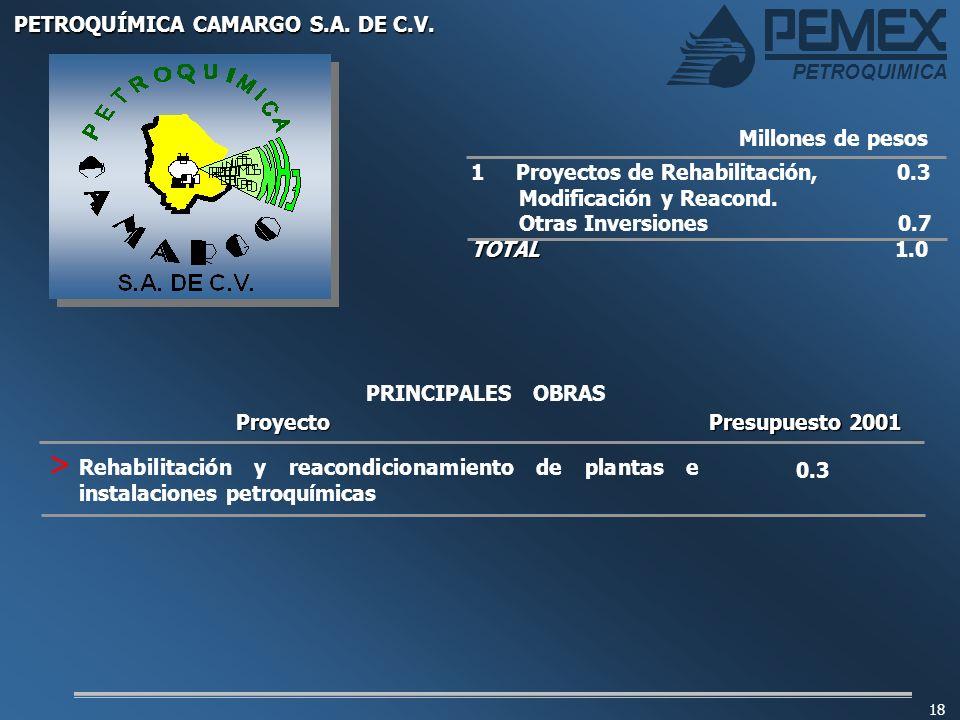 PETROQUIMICA 18 1 Proyectos de Rehabilitación, 0.3 Modificación y Reacond. Otras Inversiones 0.7 TOTAL TOTAL 1.0 Millones de pesos PRINCIPALES OBRASPr