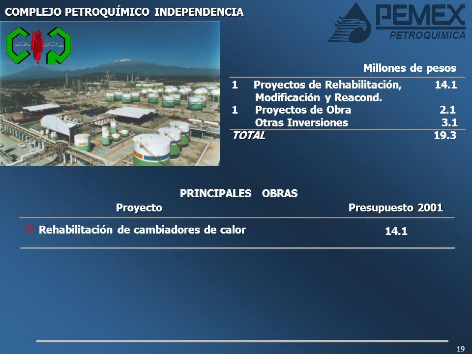 PETROQUIMICA 19 1 Proyectos de Rehabilitación, 14.1 Modificación y Reacond. 1 Proyectos de Obra 2.1 Otras Inversiones 3.1 TOTAL TOTAL 19.3 Millones de