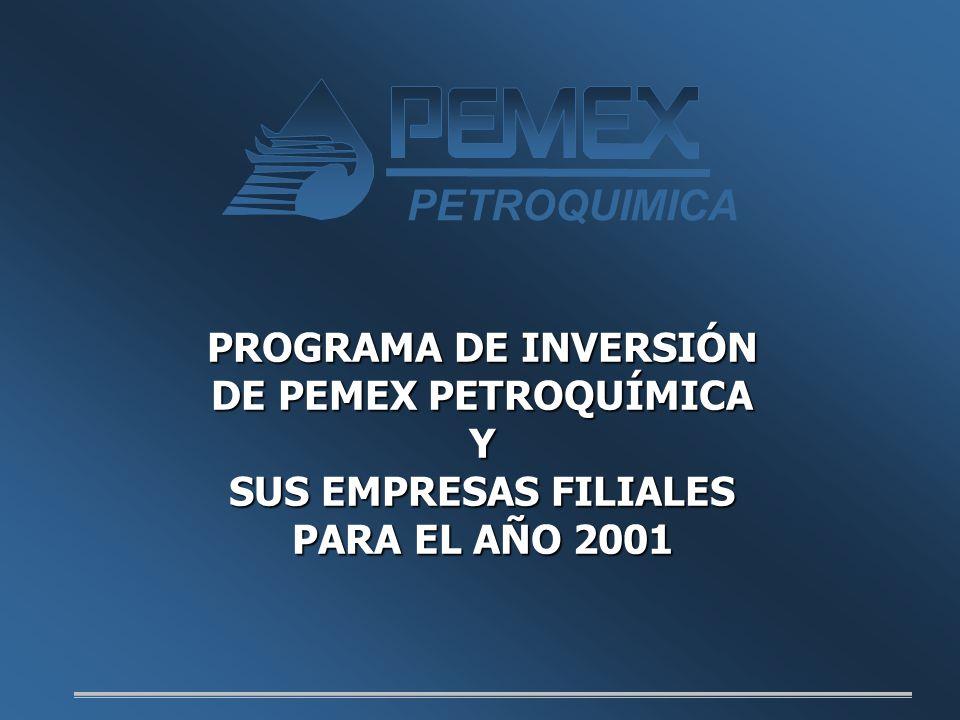 PROGRAMA DE INVERSIÓN DE PEMEX PETROQUÍMICA Y SUS EMPRESAS FILIALES PARA EL AÑO 2001 PETROQUIMICA