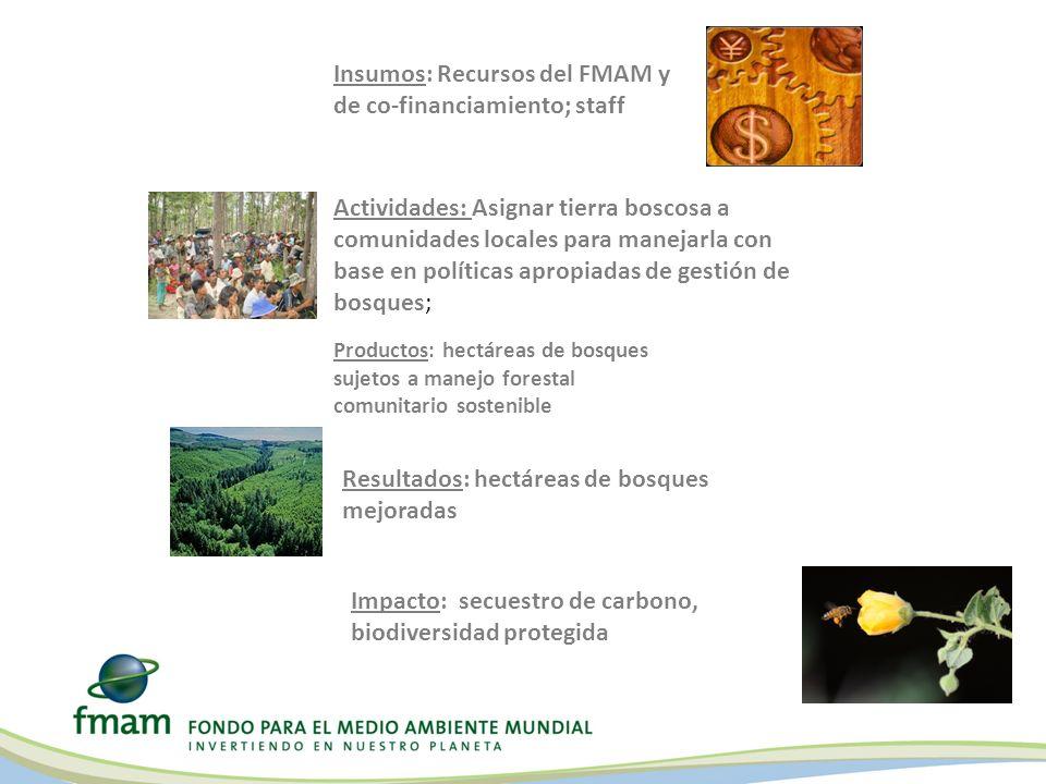 Insumos: Recursos del FMAM y de co-financiamiento; staff Actividades: Asignar tierra boscosa a comunidades locales para manejarla con base en política