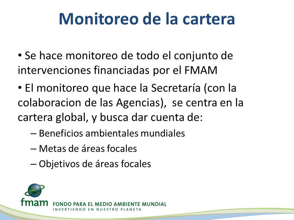 Se hace monitoreo de todo el conjunto de intervenciones financiadas por el FMAM El monitoreo que hace la Secretaría (con la colaboracion de las Agenci