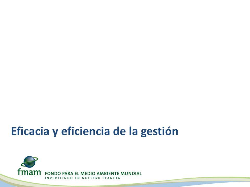 Eficacia y eficiencia de la gestión