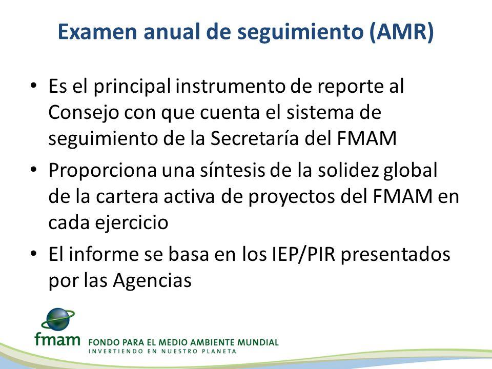 Examen anual de seguimiento (AMR) Es el principal instrumento de reporte al Consejo con que cuenta el sistema de seguimiento de la Secretaría del FMAM