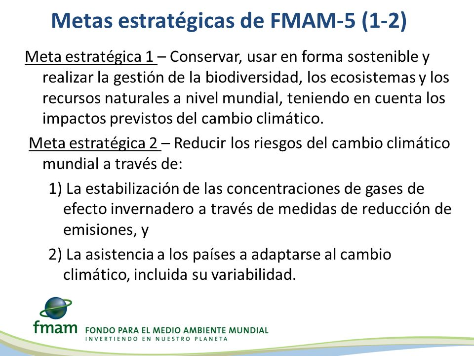 Metas estratégicas de FMAM-5 (1-2) Meta estratégica 1 – Conservar, usar en forma sostenible y realizar la gestión de la biodiversidad, los ecosistemas