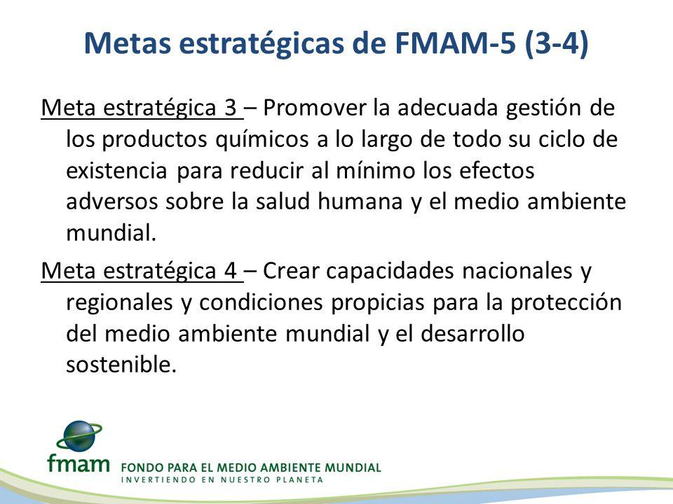 Alineación de los objetivos de las áreas focales con las metas estratégicas Cada una de las metas y de los objetivos de las áreas focales está alineada con metas estratégicas del FMAM Las metas a nivel de proyectos están alineadas con los objetivos de las áreas focales Objetivo de biodiversidad: Mejor sostenibiliad de los sistemas de zonas protegidas Meta estratégica 1: Conservar, usar en forma sostenible y realizar la gestión de la biodiversidad, los ecosistemas y los recursos naturales a nivel mundial Objetivo de cambio climático: Promover la demostración, la puesta en acción y la transferencia de tecnologías de bajo nivel de emisión de carbono innovadoras Meta estratégica 2: Reducir los riesgos del cambio climático mundial estabilizando las concentraciones de gases de efecto invernadero a través de medidas de reducción de emisiones