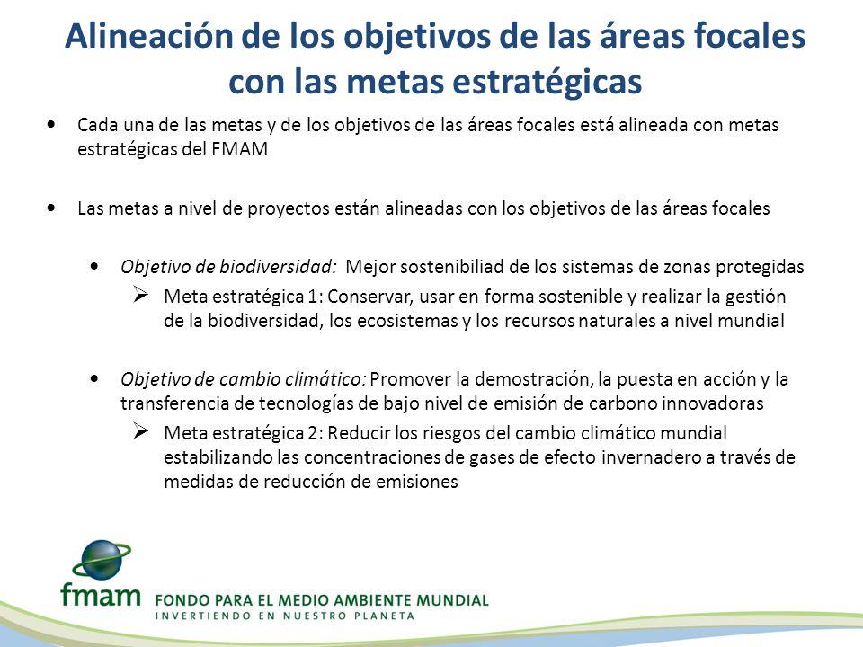 Alineación de los objetivos de las áreas focales con las metas estratégicas Cada una de las metas y de los objetivos de las áreas focales está alinead