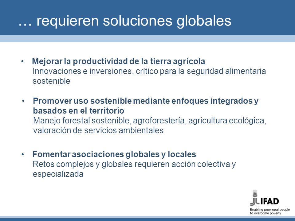 Alianzas que funcionan FIDA es una de las diez agencias GEF desde 2005 Alianza estratégica para fomentar un desarrollo rural resistente al cambio climático y ambientalmente sostenible Especializada en uso sostenible de recursos naturales, degradación de tierras, y adaptación al, y mitigación del, cambio climático Cartera de proyectos actual: 30 propuestas en diseño o ejecución, de las cuales 6 en América Latina (Brasil, Ecuador, México, Panamá, Perú y Venezuela) Donación GEF media: US$ 3 m Cofinanciamiento medio GEF/FIDA: 1:4