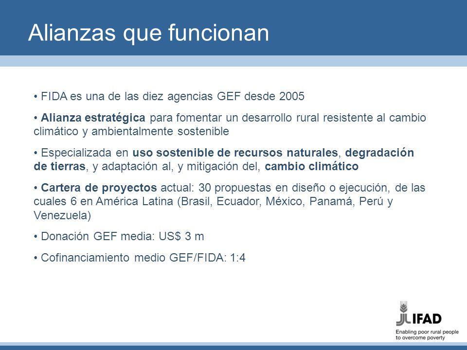 Alianzas que funcionan FIDA es una de las diez agencias GEF desde 2005 Alianza estratégica para fomentar un desarrollo rural resistente al cambio clim