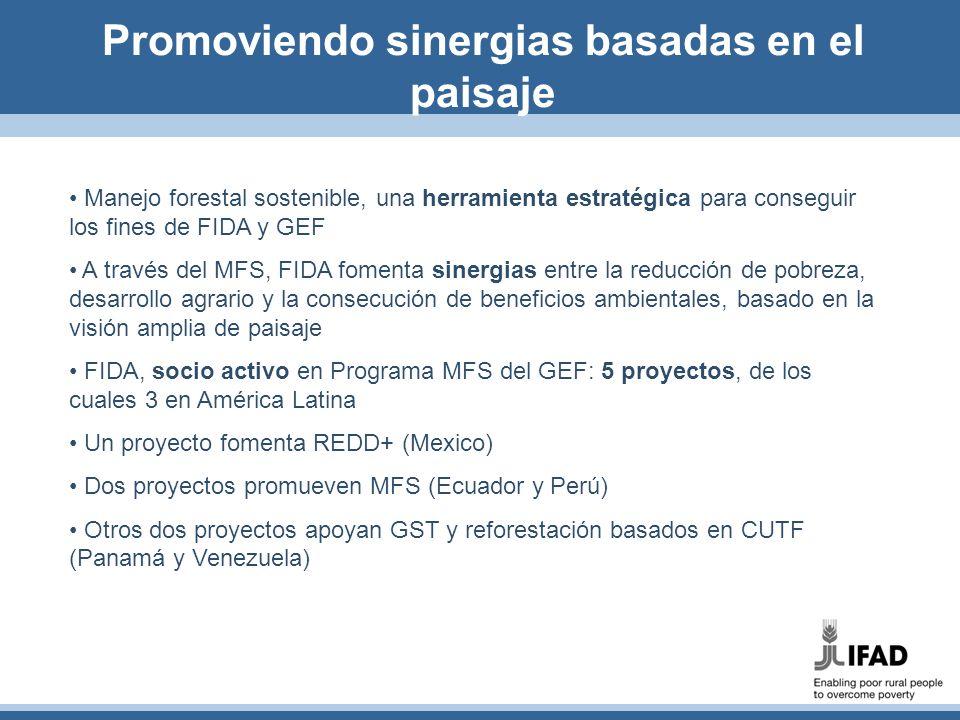 Promoviendo sinergias basadas en el paisaje Manejo forestal sostenible, una herramienta estratégica para conseguir los fines de FIDA y GEF A través de