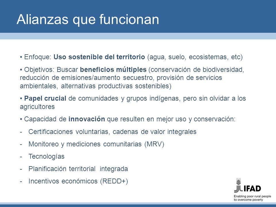 Alianzas que funcionan Enfoque: Uso sostenible del territorio (agua, suelo, ecosistemas, etc) Objetivos: Buscar beneficios múltiples (conservación de