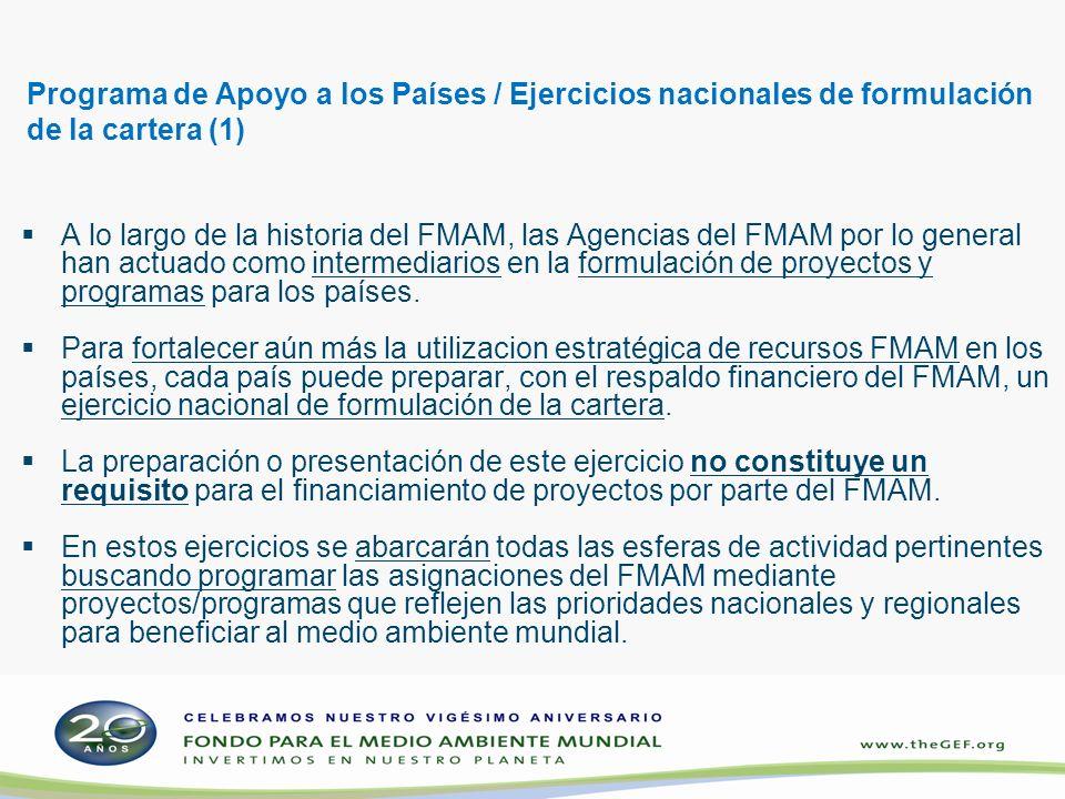 Programa de Apoyo a los Países / Ejercicios nacionales de formulación de la cartera (1) A lo largo de la historia del FMAM, las Agencias del FMAM por lo general han actuado como intermediarios en la formulación de proyectos y programas para los países.