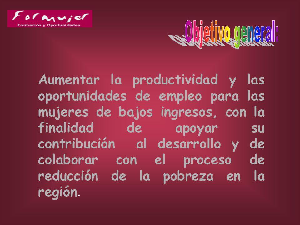 Programa Regional para el Fortalecimiento de la Formación Profesional y Técnica de Mujeres de Bajos Ingresos en América Latina