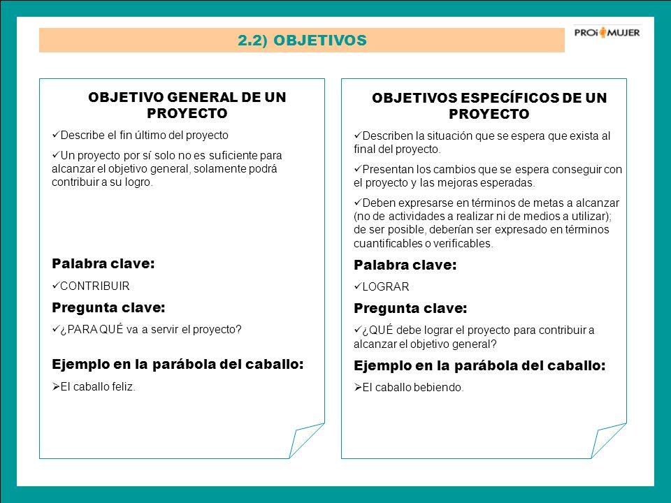 2.2) OBJETIVOS OBJETIVOS ESPECÍFICOS DE UN PROYECTO Describen la situación que se espera que exista al final del proyecto. Presentan los cambios que s