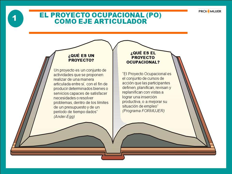 EL PROYECTO OCUPACIONAL (PO) COMO EJE ARTICULADOR ¿QUÉ ES UN PROYECTO? Un proyecto es un conjunto de actividades que se proponen realizar de una maner