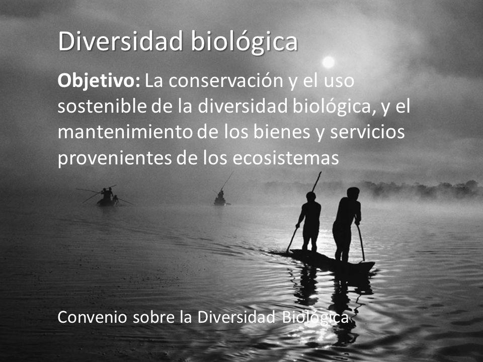 Diversidad biológica Objetivo: La conservación y el uso sostenible de la diversidad biológica, y el mantenimiento de los bienes y servicios provenientes de los ecosistemas Convenio sobre la Diversidad Biológica