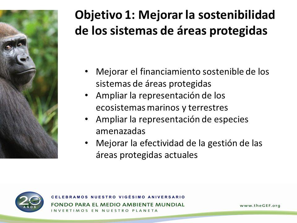 Objetivo 1: Mejorar la sostenibilidad de los sistemas de áreas protegidas Mejorar el financiamiento sostenible de los sistemas de áreas protegidas Ampliar la representación de los ecosistemas marinos y terrestres Ampliar la representación de especies amenazadas Mejorar la efectividad de la gestión de las áreas protegidas actuales