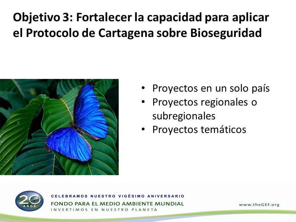 Proyectos en un solo país Proyectos regionales o subregionales Proyectos temáticos Objetivo 3: Fortalecer la capacidad para aplicar el Protocolo de Cartagena sobre Bioseguridad