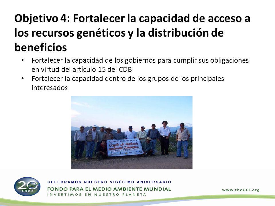 Fortalecer la capacidad de los gobiernos para cumplir sus obligaciones en virtud del artículo 15 del CDB Fortalecer la capacidad dentro de los grupos de los principales interesados Objetivo 4: Fortalecer la capacidad de acceso a los recursos genéticos y la distribución de beneficios