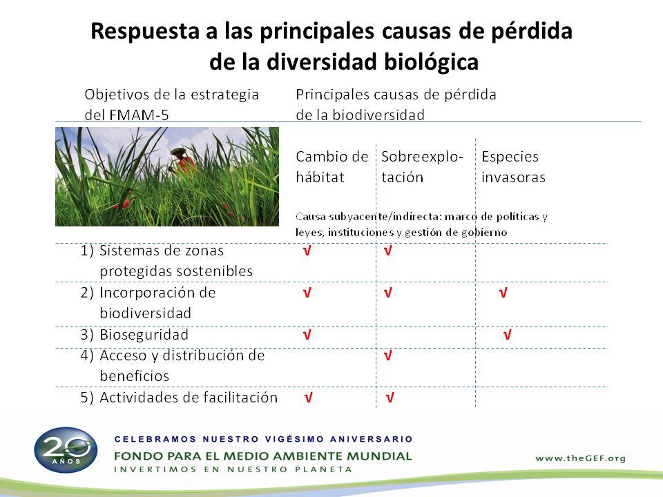 Respuesta a las principales causas de pérdida de la diversidad biológica