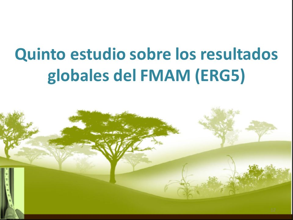 Quinto estudio sobre los resultados globales del FMAM (ERG5) 12