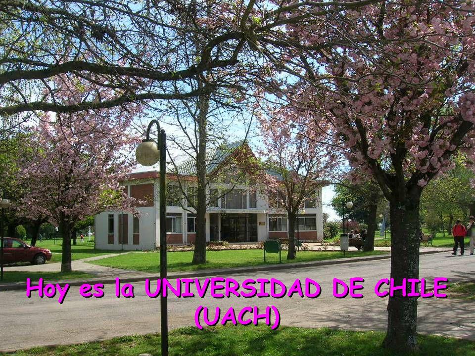 Hoy es la UNIVERSIDAD DE CHILE (UACH)