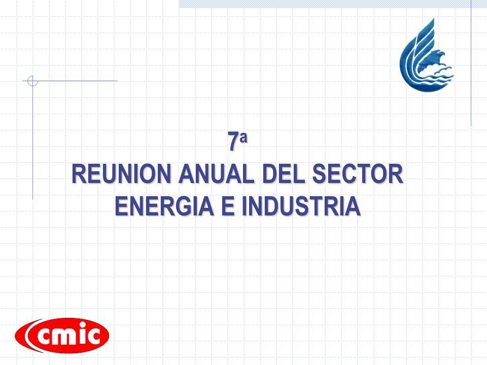 7 a REUNION ANUAL DEL SECTOR ENERGIA E INDUSTRIA