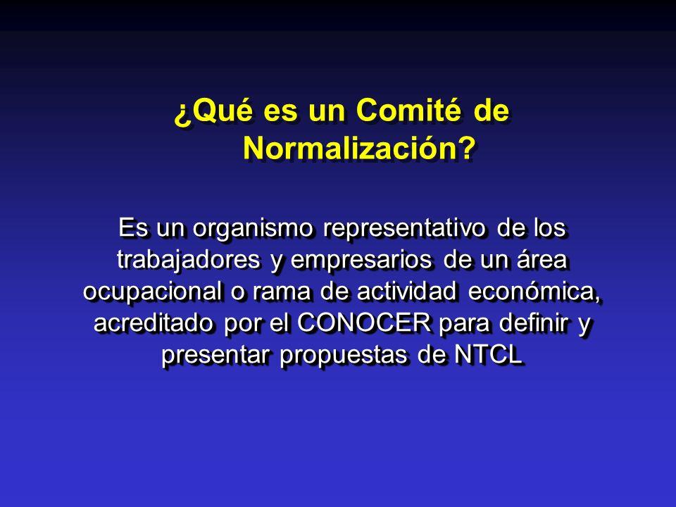 ¿Qué es un Comité de Normalización? Es un organismo representativo de los y empresarios de un área ocupacional o rama de actividad económica, acredita