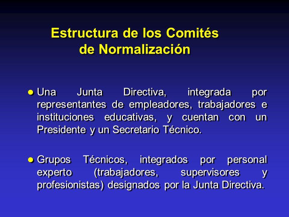 Estructura de los Comités de Normalización Una Junta Directiva, integrada por representantes de empleadores, trabajadores e instituciones educativas,