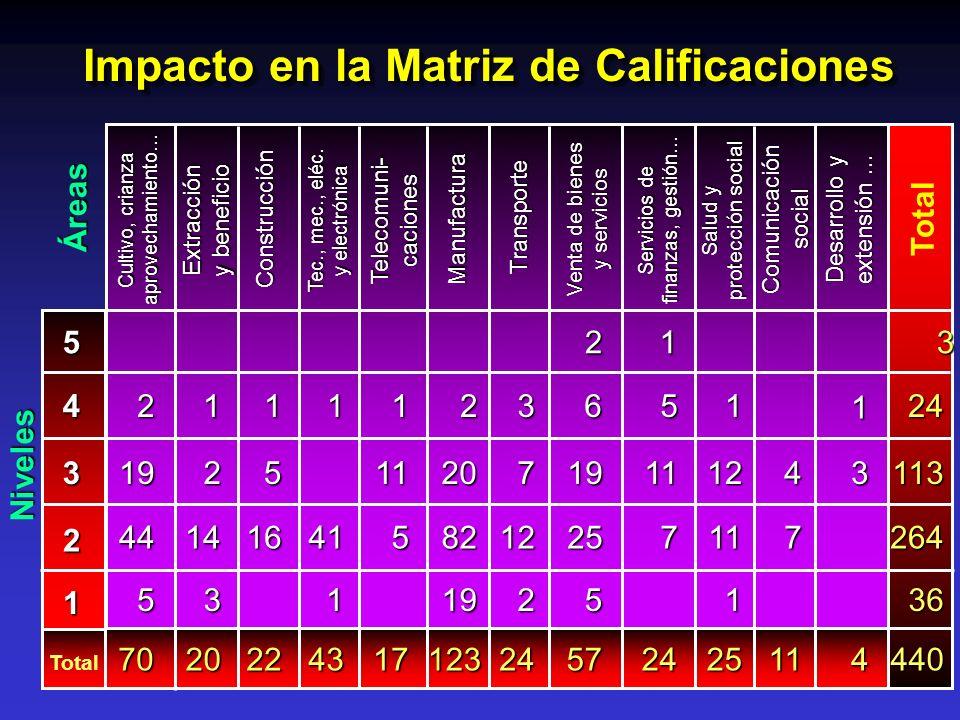 Impacto en la Matriz de Calificaciones Áreas Niveles 5 4 3 2 1 Total 113 264 36 440 3 14 20 16 22 41 43 5 11 17 19 82 20 123 12 7 2 24 7 4 11 5 44 19