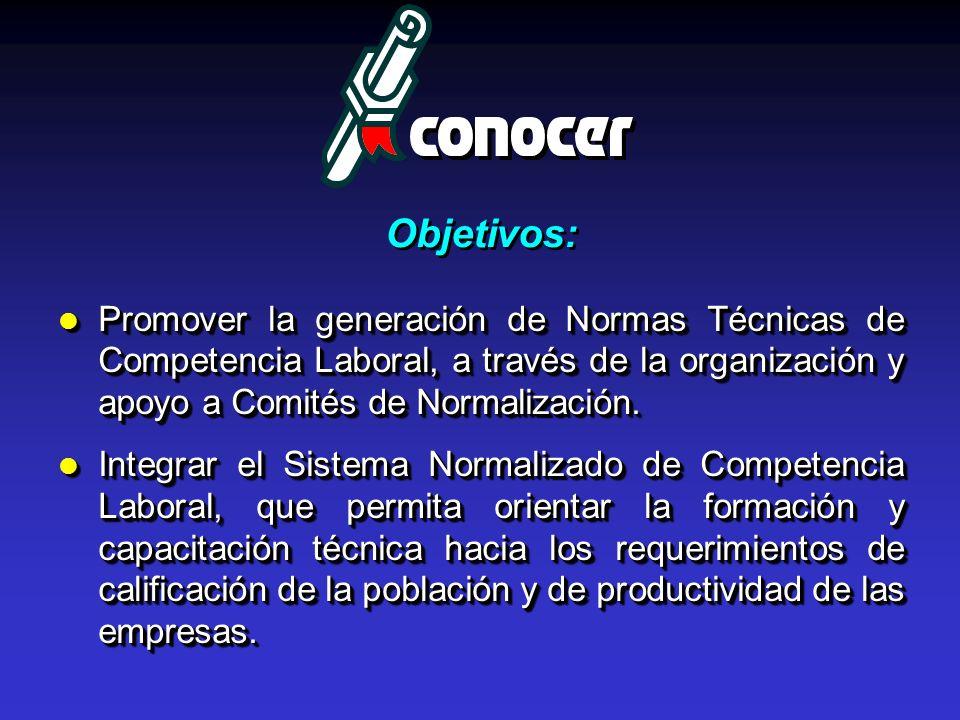 Promover la generación de Normas Técnicas de Competencia Laboral, a través de la organización y apoyo a Comités de Normalización. Promover la generaci