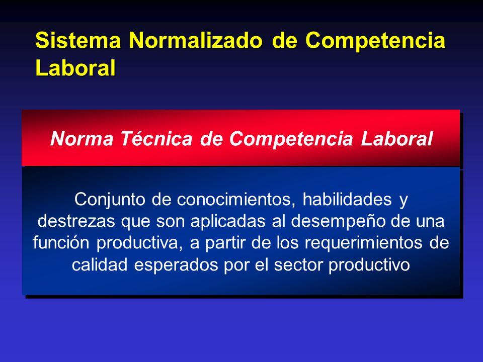 Sistema Normalizado de Competencia Laboral Norma Técnica de Competencia Laboral Conjunto de conocimientos, habilidades y destrezas que son aplicadas a
