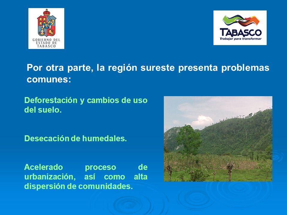 Por otra parte, la región sureste presenta problemas comunes: Deforestación y cambios de uso del suelo.