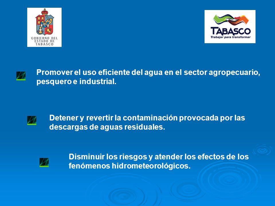 Promover el uso eficiente del agua en el sector agropecuario, pesquero e industrial.