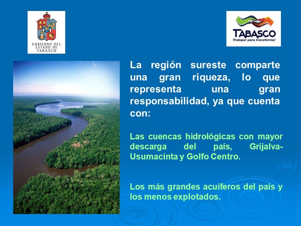 La región sureste comparte una gran riqueza, lo que representa una gran responsabilidad, ya que cuenta con: Las cuencas hidrológicas con mayor descarga del país, Grijalva- Usumacinta y Golfo Centro.