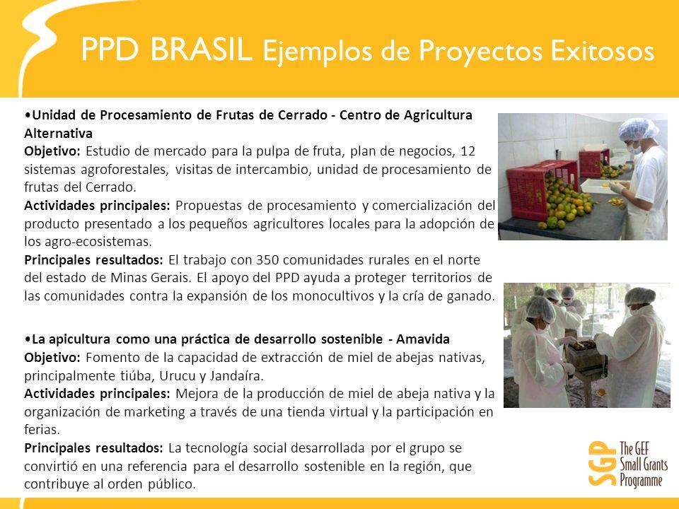 PPD BRASIL Ejemplos de Proyectos Exitosos Unidad de Procesamiento de Frutas de Cerrado - Centro de Agricultura Alternativa Objetivo: Estudio de mercad