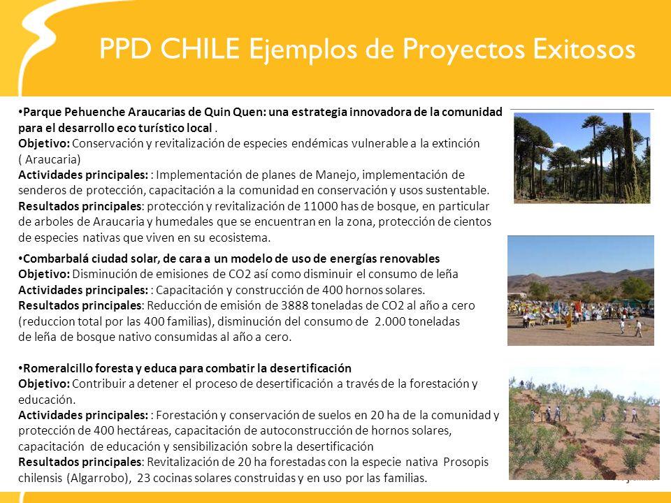 PPD CHILE Ejemplos de Proyectos Exitosos Parque Pehuenche Araucarias de Quin Quen: una estrategia innovadora de la comunidad para el desarrollo eco tu