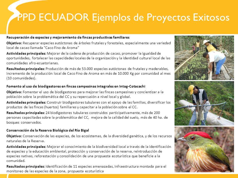 PPD ECUADOR Ejemplos de Proyectos Exitosos Recuperación de especies y mejoramiento de fincas productivas familiares Objetivo: Recuperar especies autóc