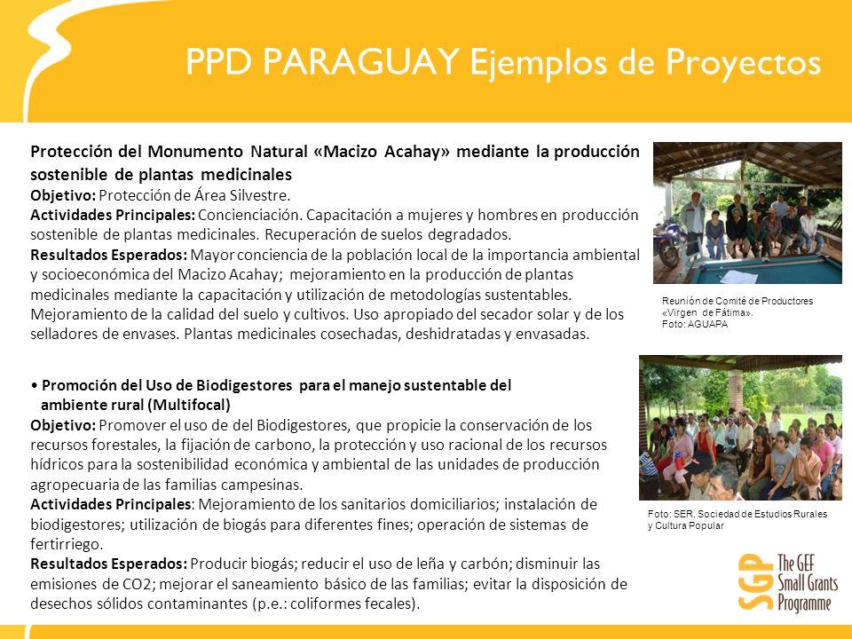 PPD PARAGUAY Ejemplos de Proyectos Protección del Monumento Natural «Macizo Acahay» mediante la producción sostenible de plantas medicinales Objetivo: